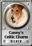 Casey's Celtic Charm Silver Award