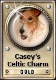 Casey's Celtic Charm Gold  Award (WTA) World's Top Award Received on October 12 2008 Dimensions: 110 x 158 Size: 7.24 KB