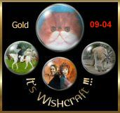 <p>It's Wishcraft Gold Award