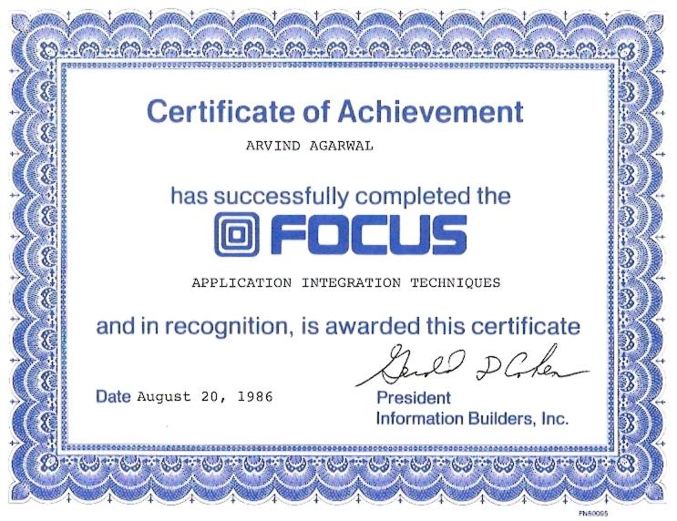 IBI Focus Application Integration Techniques