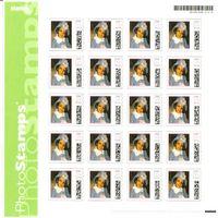 Aanchal Postal Stamp
