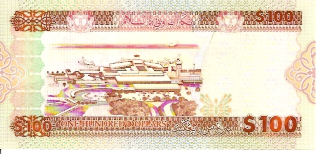 Government of Burnei