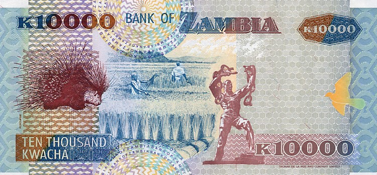 Government of Zambia  10000 Kwacha    No Date Issue  Printed on Polymer (Plastic) Paper Dimensions: 200 X 100, Type: JPEG